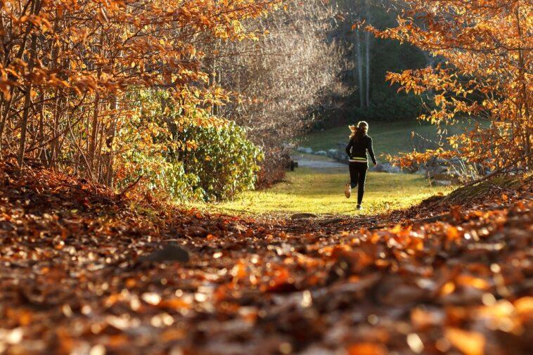 Best Bra For Running