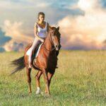 Best Bra For Horse Riding